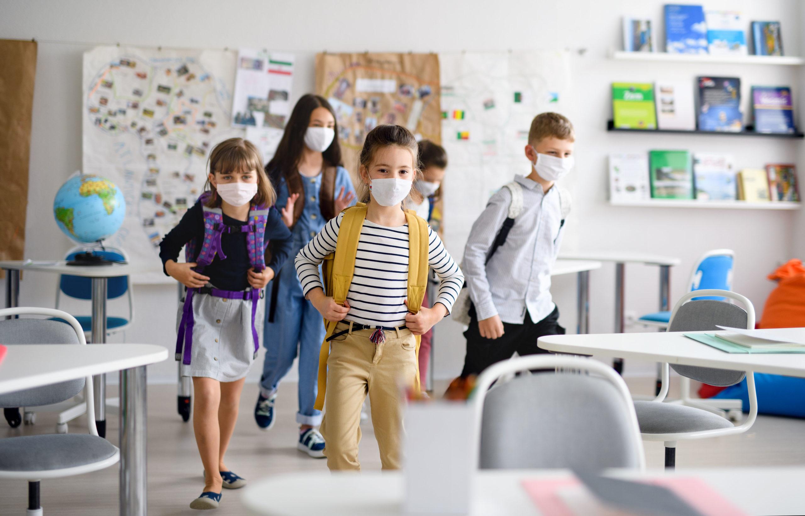 O Projeto Político Pedagógico: um guia para a comunidade escolar em tempos de pandemia